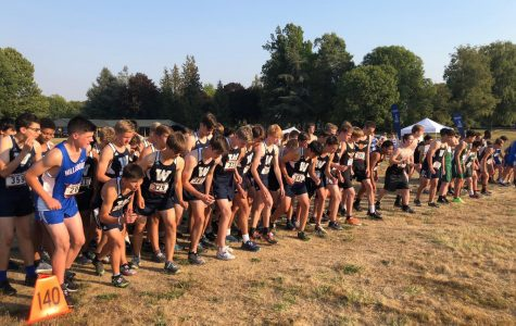 Wilsonville Cross Country Dominates at NWOC Preview