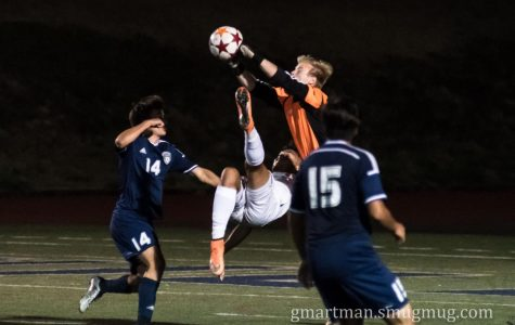 Cats fall to the Forest Grove Vikings, 1-0, in hard-fought match