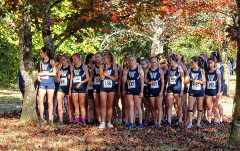 Wilsonville Cross Country Chases Down the Competition
