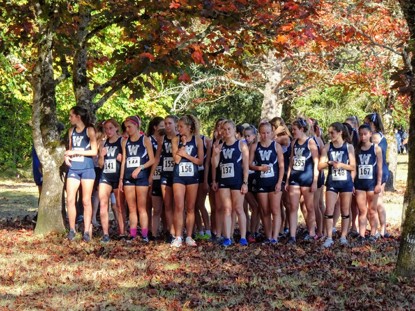 Both varsity and junior varsity girls wait expectantly at the start line. Wilsonville swept the meet, winning in all divisions.