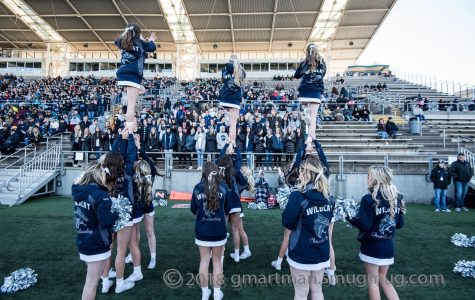 WHS Cheer takes on the Albany's at 2019 state championship