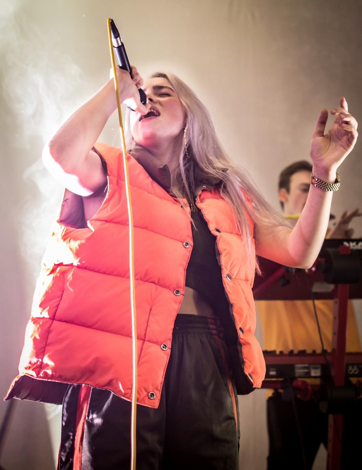Pictured above is Billie Eilish performing at The Hi Hat in Highland Park, Los Angeles, California in August 2017.