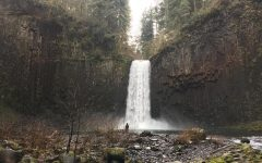 Good places to hike near Wilsonville