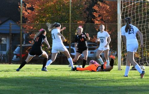 Wildcats defeat Indians in soccer showdown