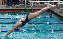 New swim season, new faces