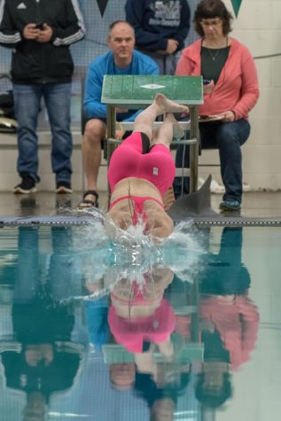 Junior Abby Maoz diving into the pool with her pink tech suit.