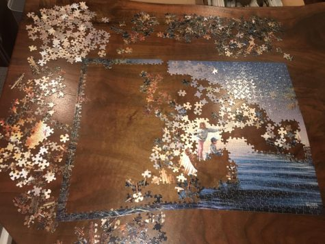 Puzzles are a great way to pass the time in quarantine!