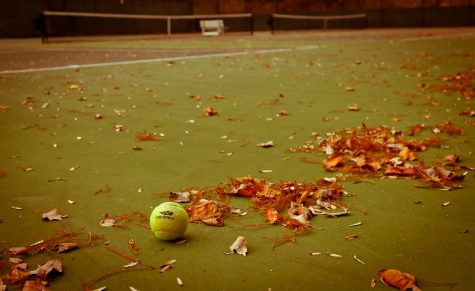 Many Wilsonville athletes would participate in a fall tennis season.