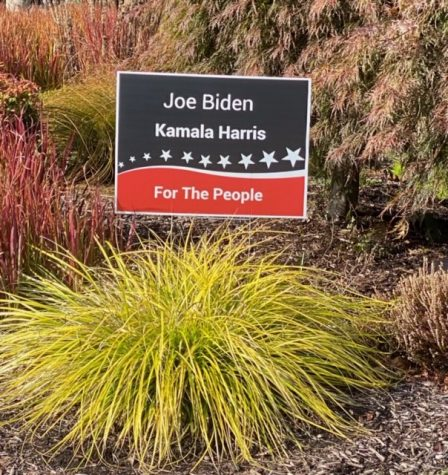 The great yard sign war of 2020!