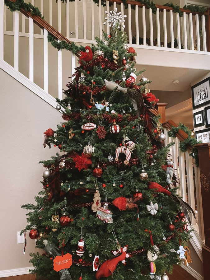 Stenstrom family Christmas tree of this 2020 holiday season.
