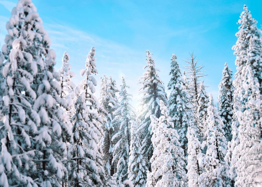 Snow fall above average for this year in Oregon's Cascade Mountains.