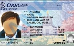 John Doe drivers license sample. Amid the pandemic, it has been even more difficult to get into the DMV.